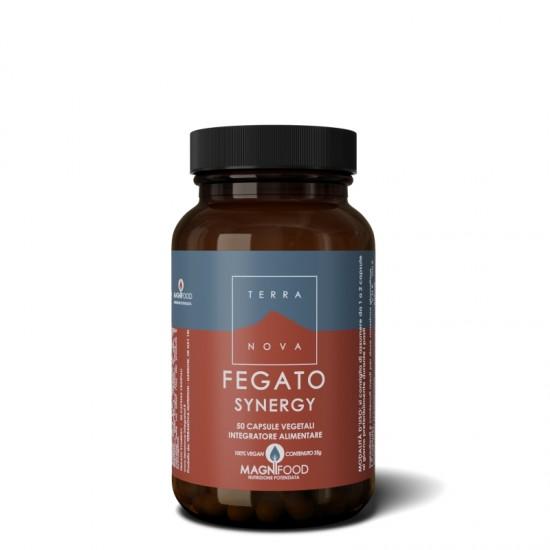 Fegato Synergy